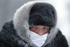 البرد